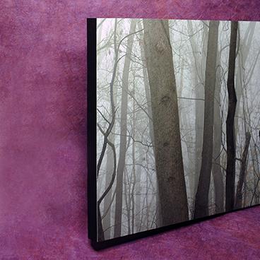 Tree panel edge_©acfallen.png