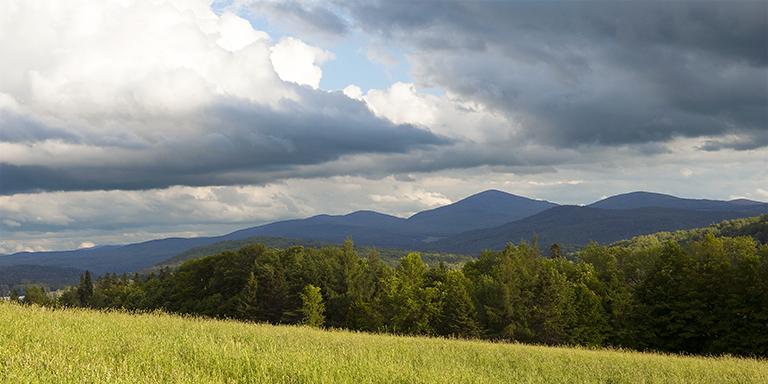 Long View 3 (Vermont Summer)