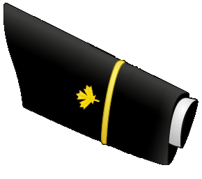 Midshipman (MID)