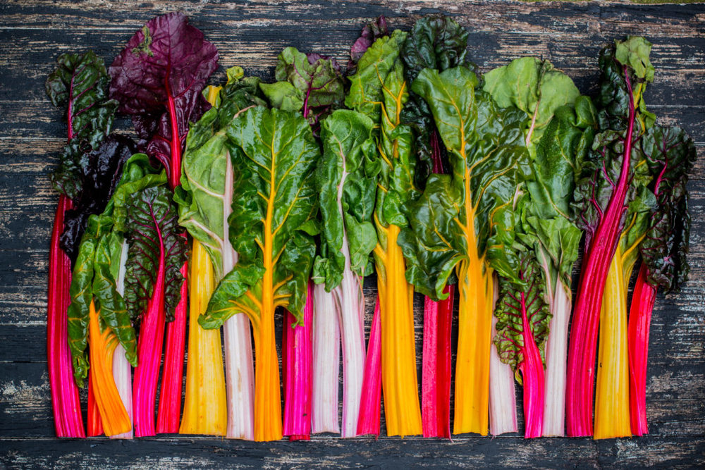 Rainbow Swiss Chard.  photograph: the internet
