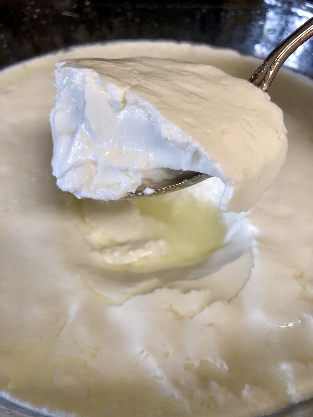 12-15 hours later, beautiful curd!