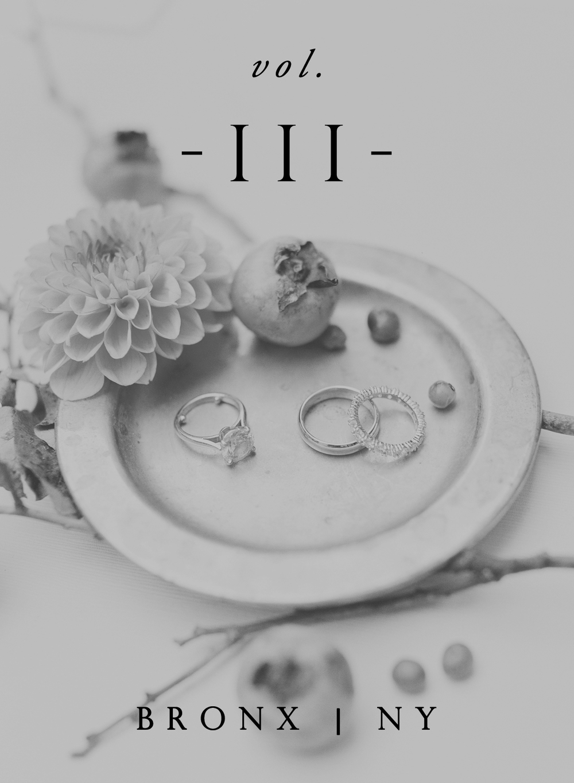 vol3B.jpg