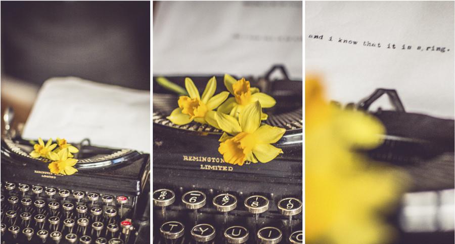 daffodilspring.jpg