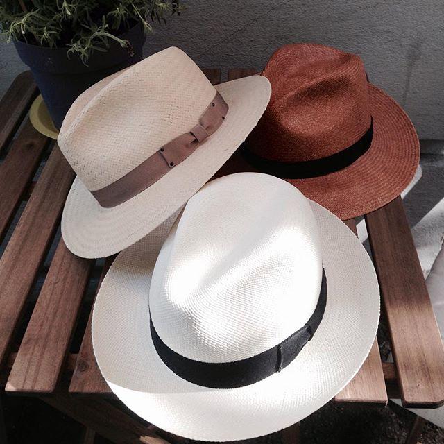 Panama hats from Bailey👒 #bailey #panamahat #summer #dame#womensfashion #fashion #oslo #hat #accessories @dagestad_woman @skomakerdagestad @bailey_hats