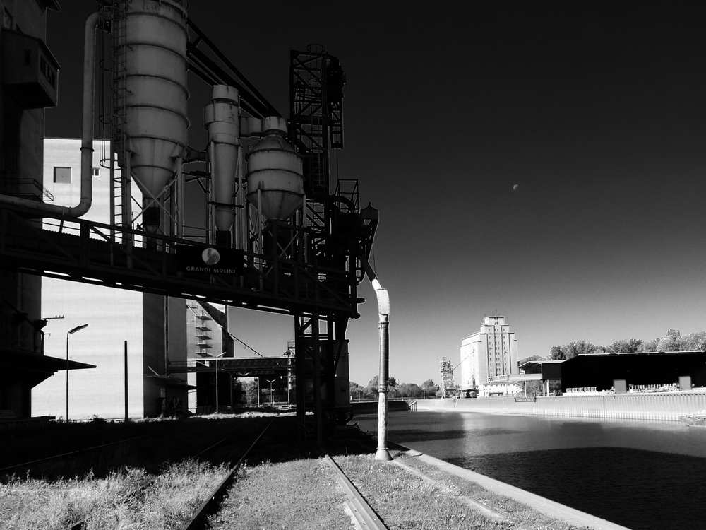 L1020407 _Snapseed.jpg