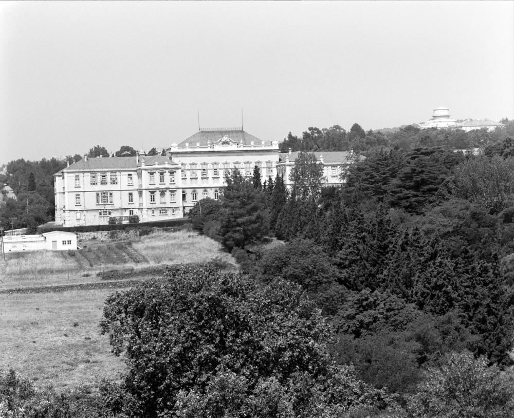 Institute of Agronomy, Lisbon   Photo: Studio Mário Novais, ca. 1975-1988, Lisbon  Biblioteca de Arte da Fundação Calouste Gulbenkian [CFT003_075446]
