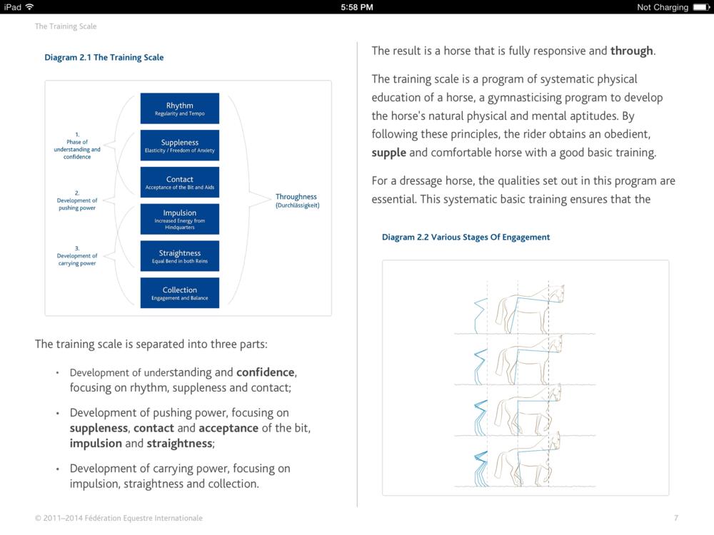 FEI_Handbook_1.png