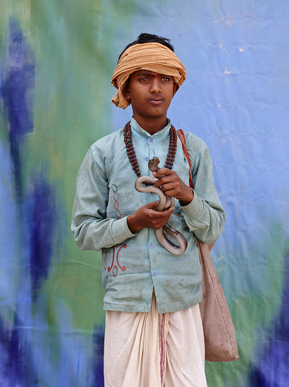 NOMADIC SNAKE CHARMER (8TH GENERATION), $15 WEEKLY, 2014