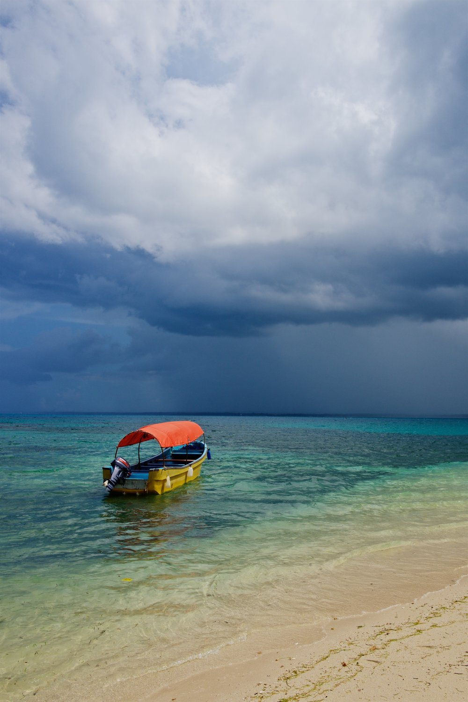 Zanzibar, 2016