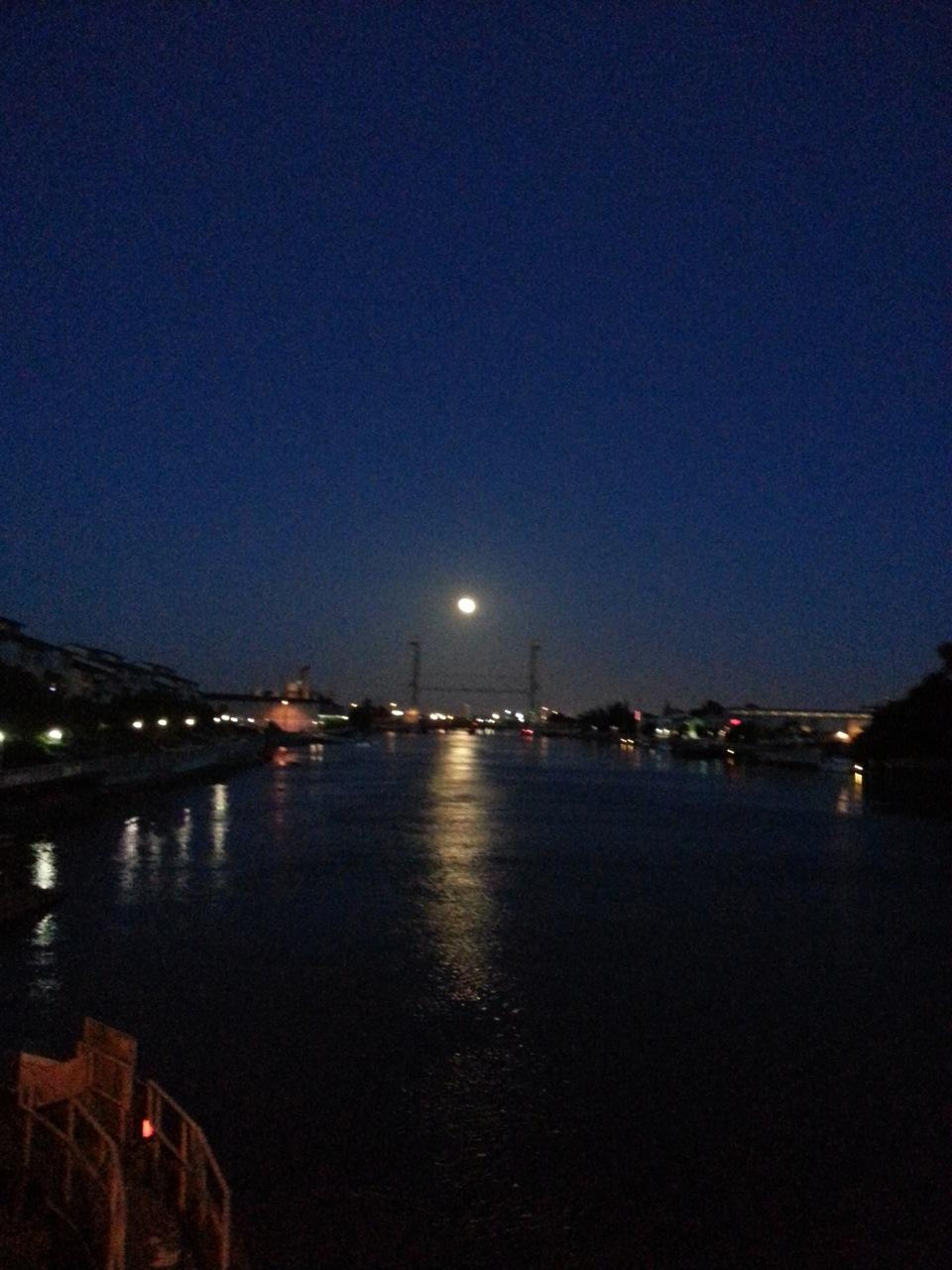 Alameda Bridge Moonlight