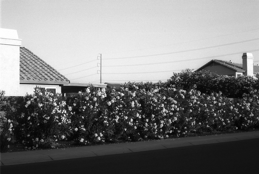 Scottsdale, Arizona, 2002