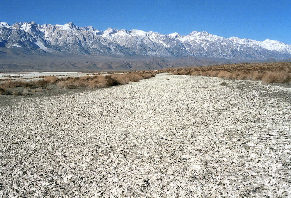 spr040312_textured_bed_owensvalley.jpg