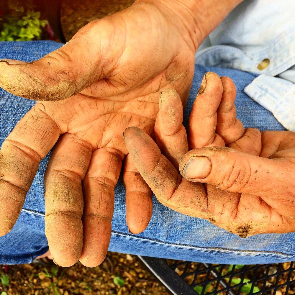 A Gardners Hands