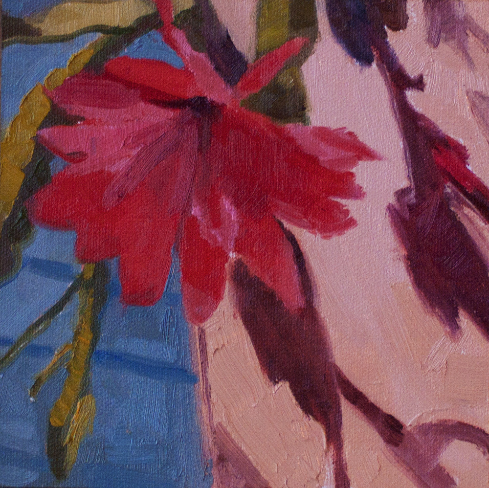 """Cactus Flower • oil on linen panel • 6"""" x 6"""""""