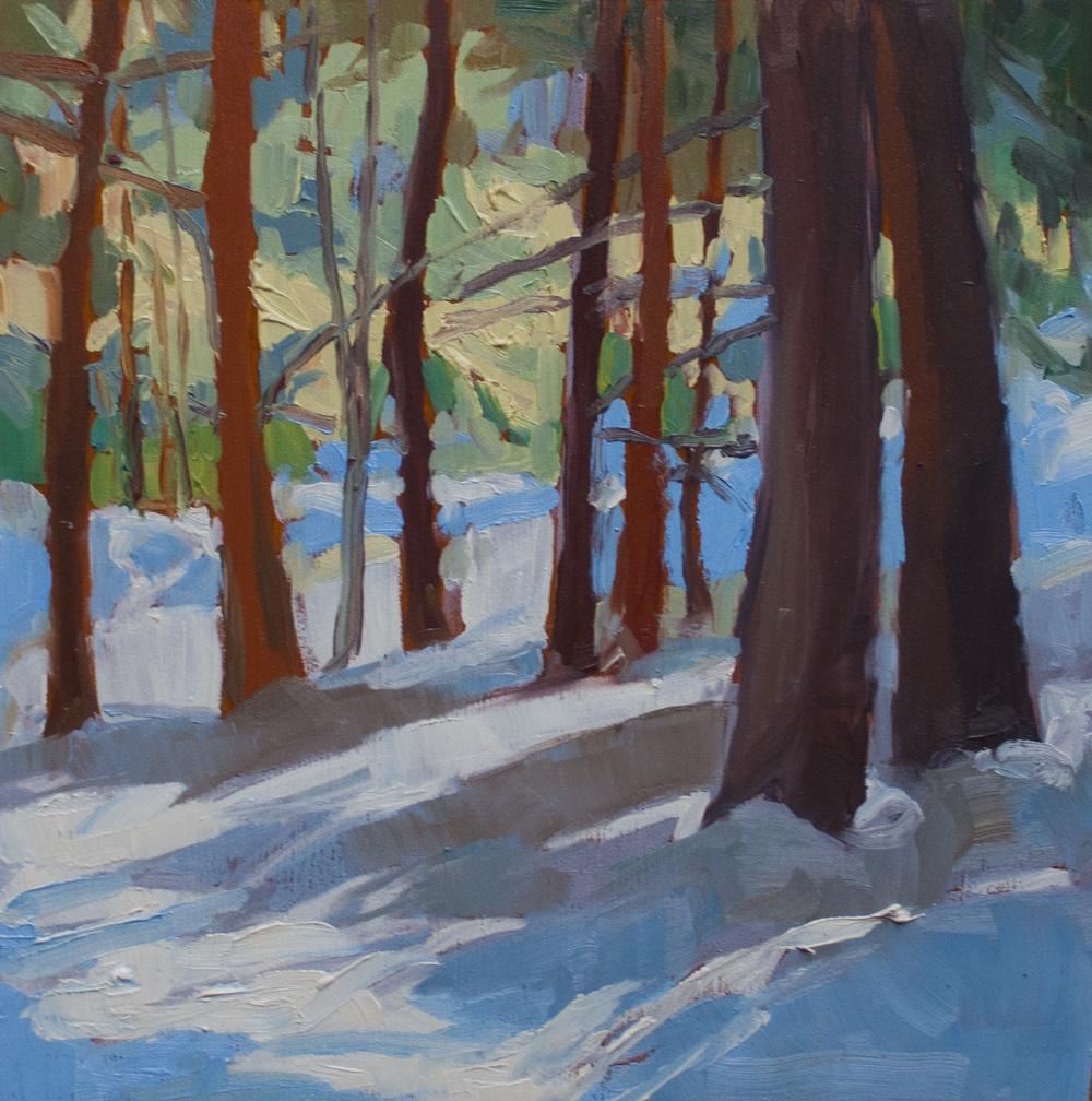 """Lakeville Hemlocks • 8"""" x 8"""" • oil on wood"""