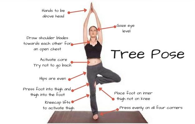 Tree Pose.jpg