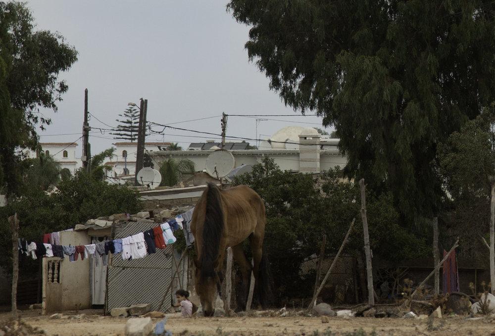 Morocco-2-50.jpg