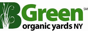 bgreen logo.JPG