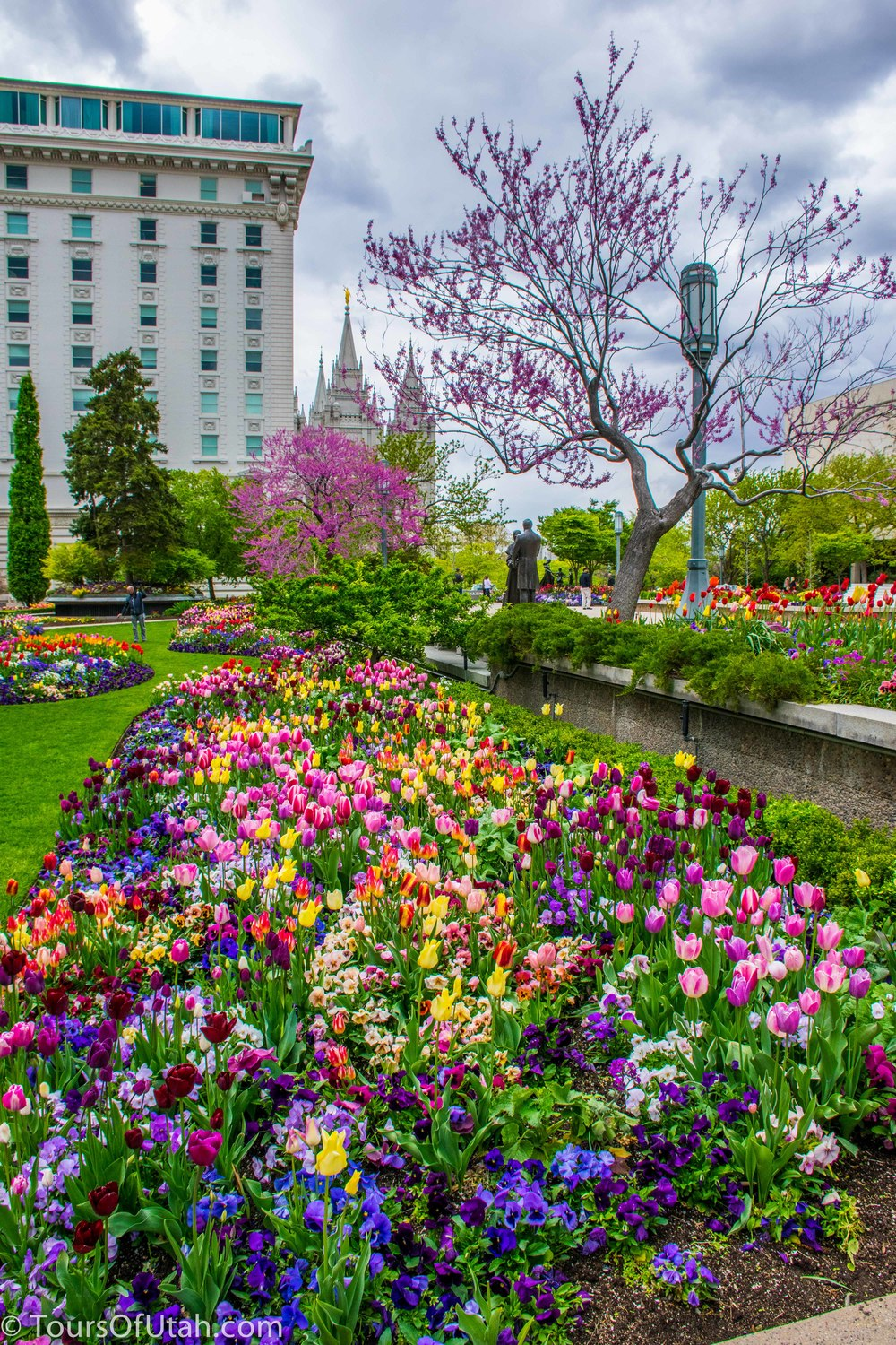 Temple Square flowers tour