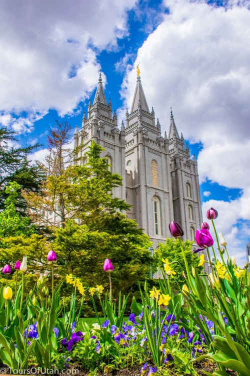 pictures of temple square.jpg
