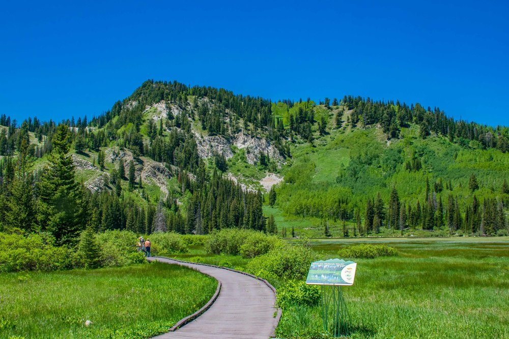 Big Cottonwood Canyon Silver Lake Tour-3.jpg
