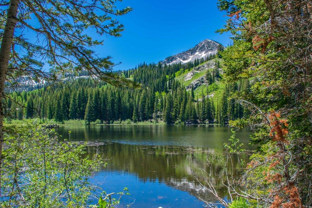 Big Cottonwood Canyon Silver Lake Tour-2.jpg