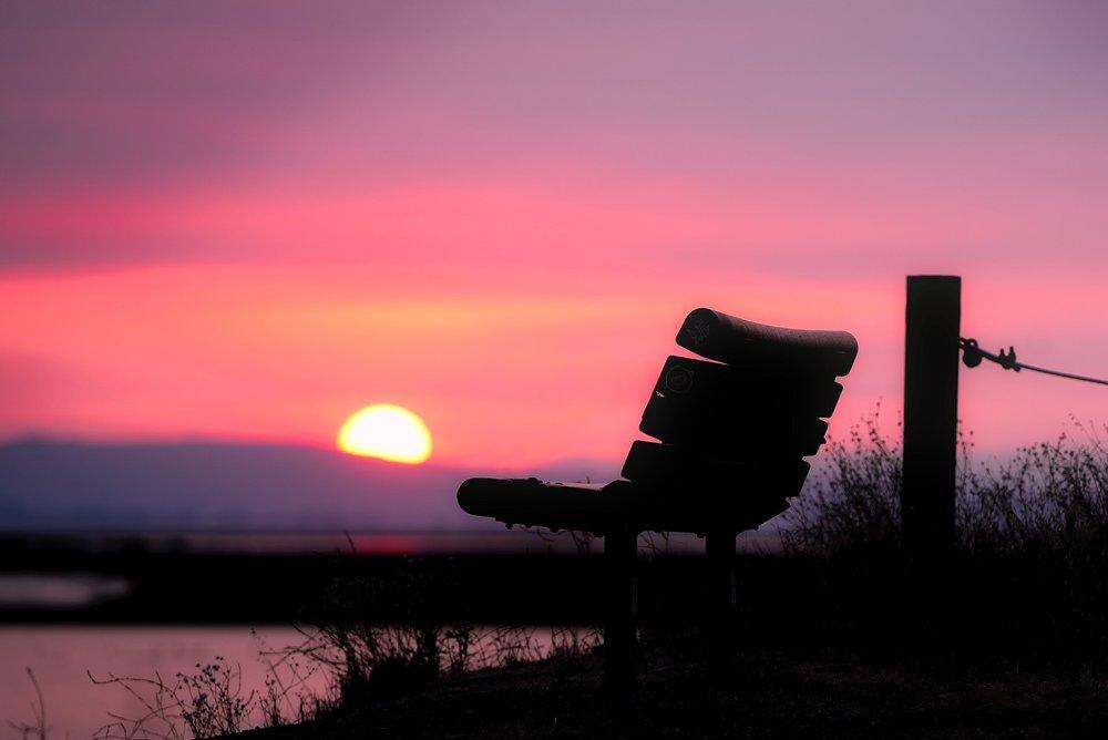 backlit-beautiful-bench-290545.jpg