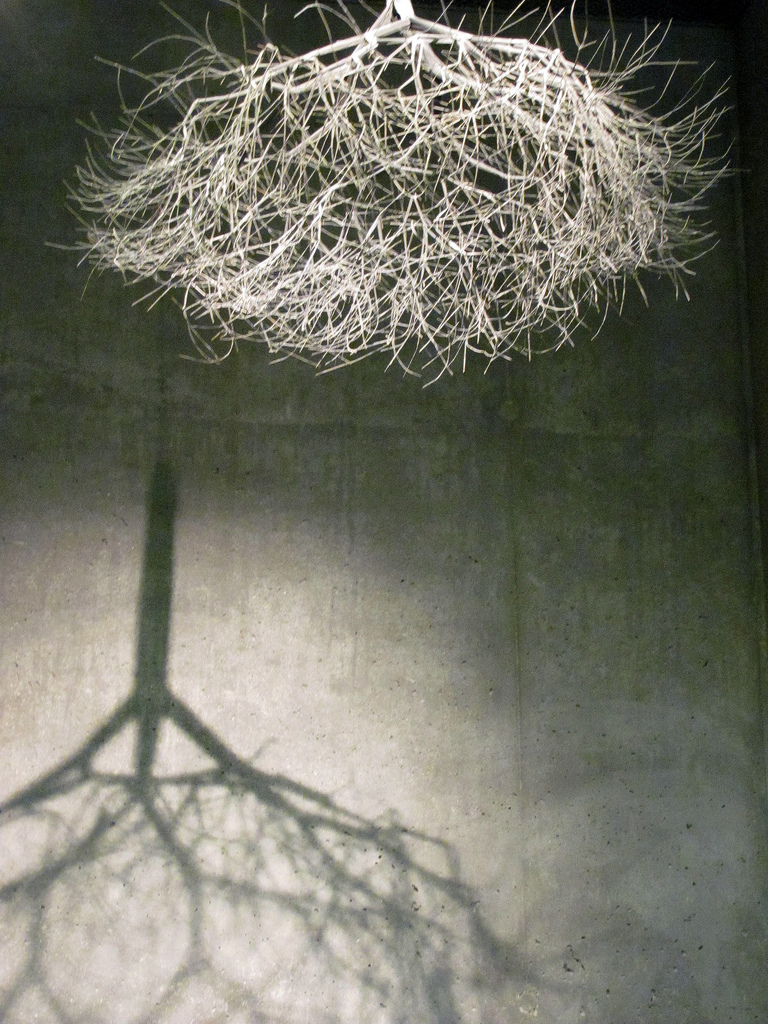 Shared_Ruth Asawa_10.jpeg