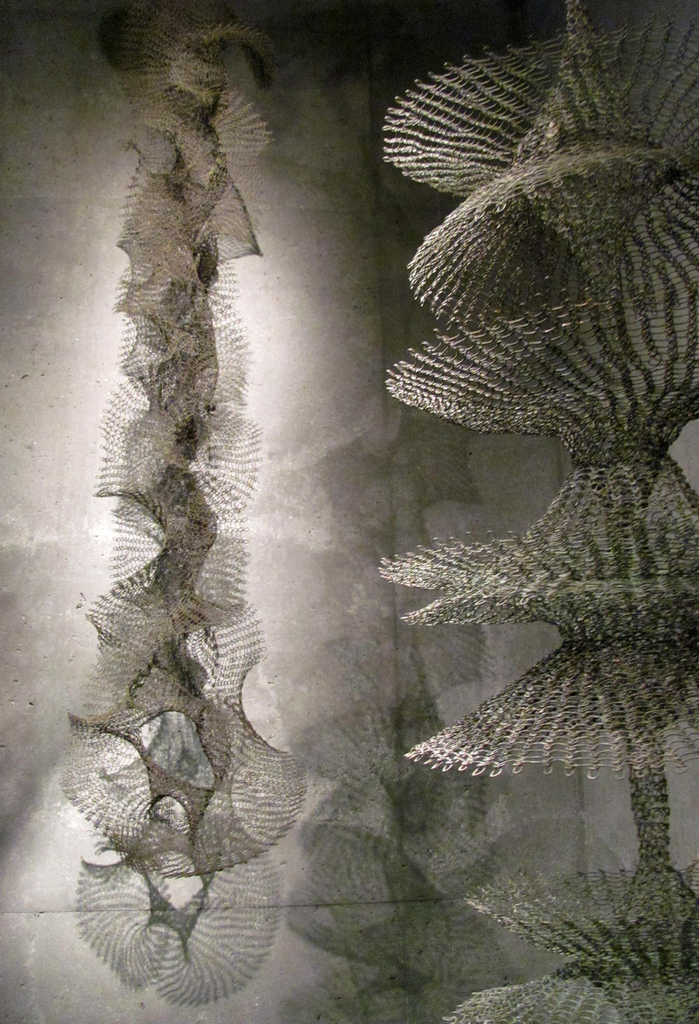 Shared_Ruth Asawa_8.jpeg