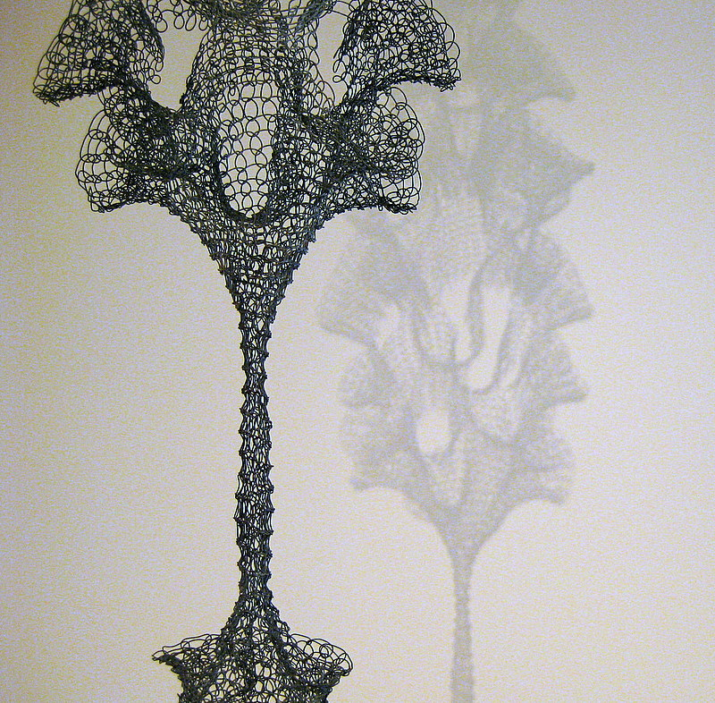 Shared_Ruth Asawa_7.jpeg