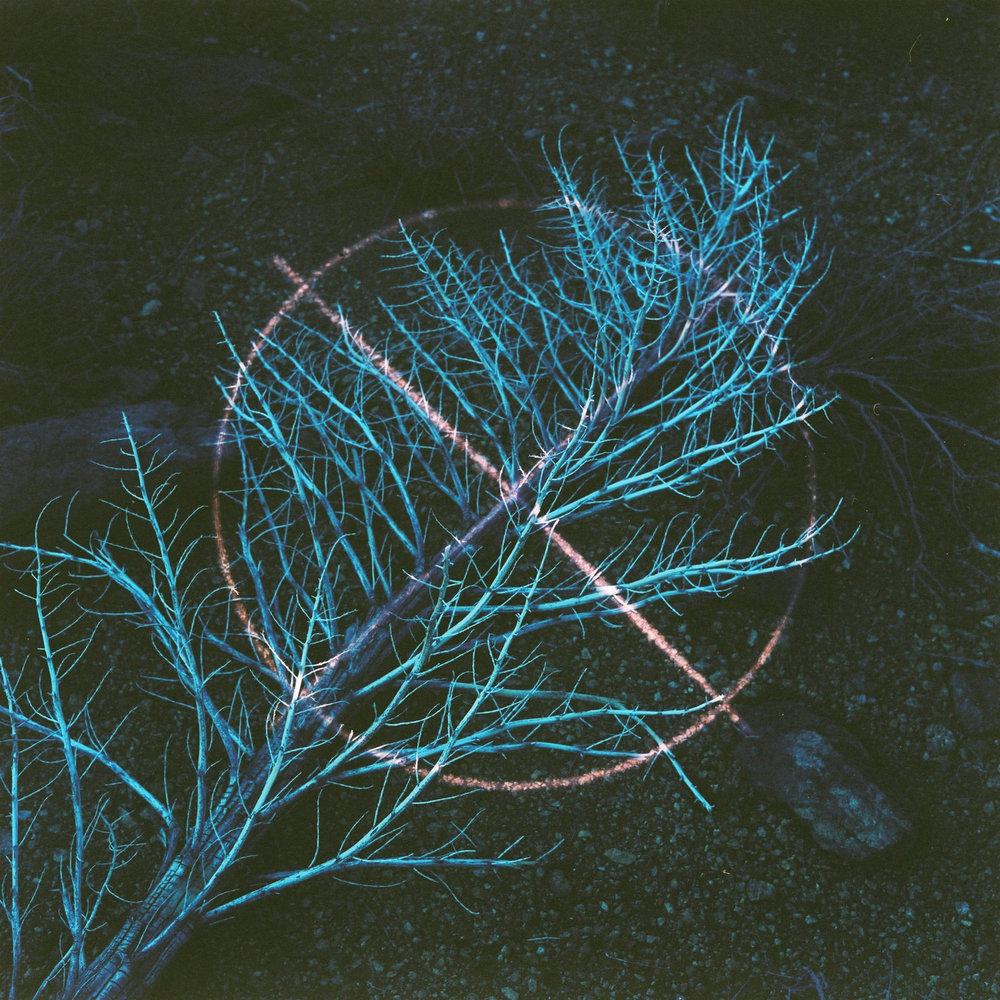 000001 (1).JPG