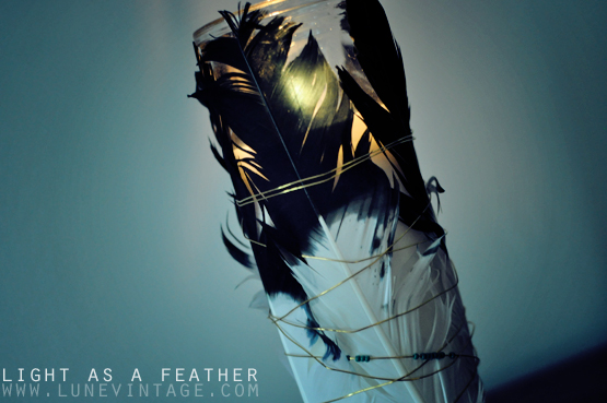light+as+a+feather+diy.jpg