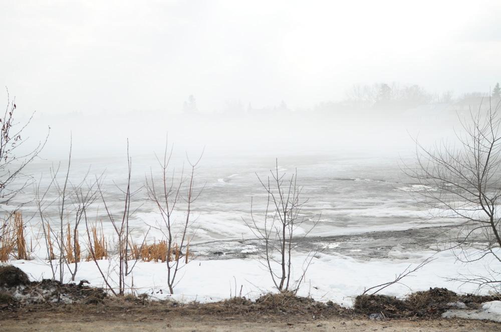 march+mist+2012.jpg