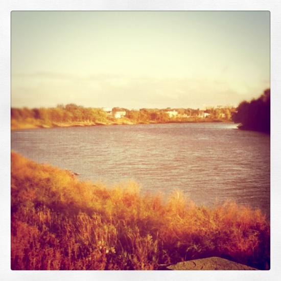 the+river.jpg