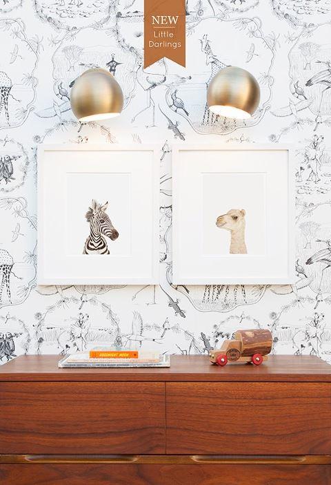 animal print shop 1.jpg