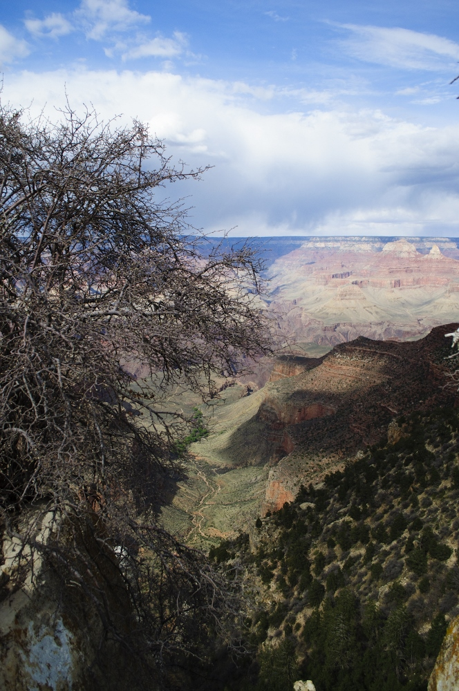 grand canyon south rim 7 (664x1000).jpg