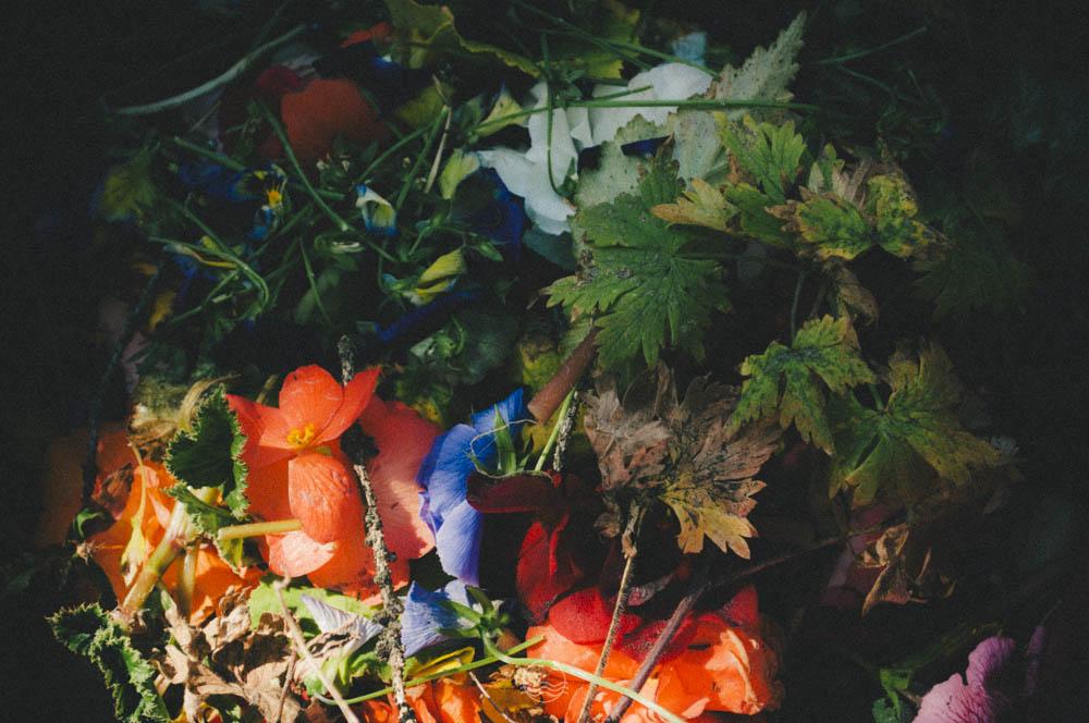 banff Cascade gardens lune vintage blog-8.jpg