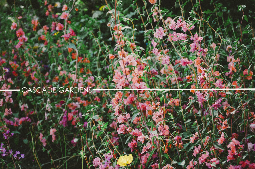 banff Cascade gardens lune vintage blog-1.jpg
