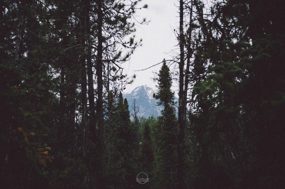 athabasca falls canada lune blog-4.jpg