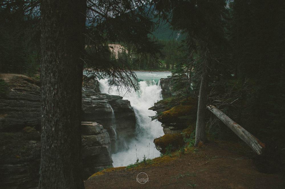 athabasca falls canada lune blog-14.jpg