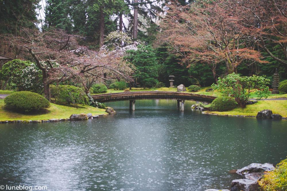 nitobe japanese garden vancouver ubc lune blog (1 of 18).jpg