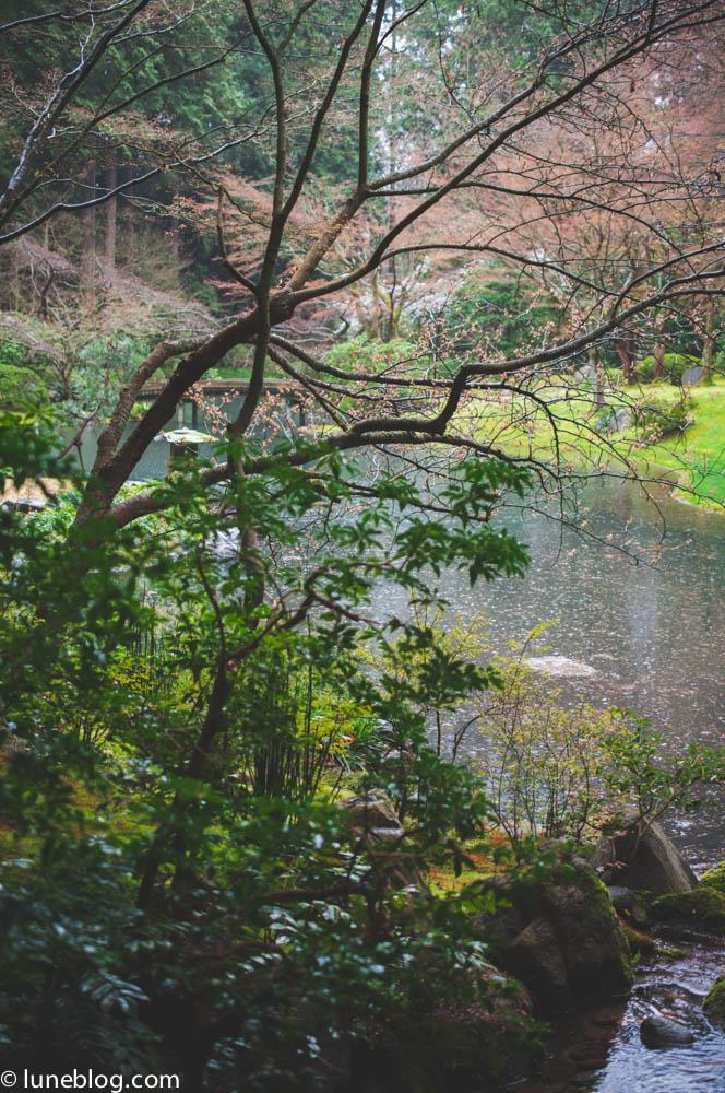 nitobe japanese garden vancouver ubc lune blog (3 of 18).jpg