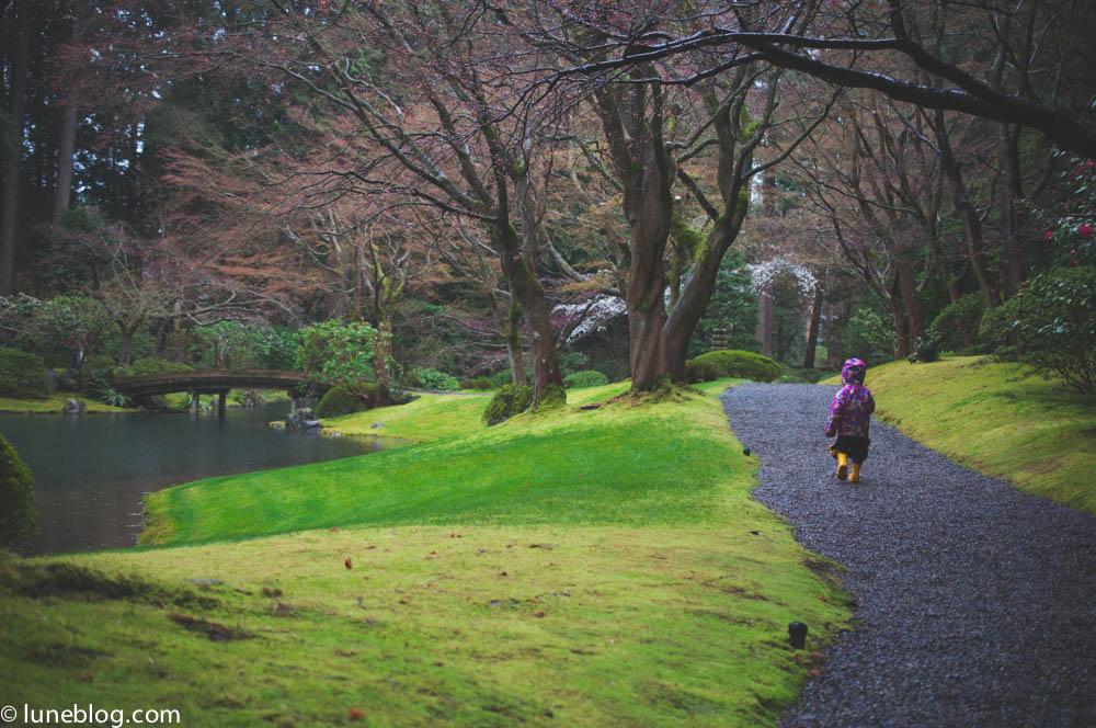 nitobe japanese garden vancouver ubc lune blog (4 of 18).jpg