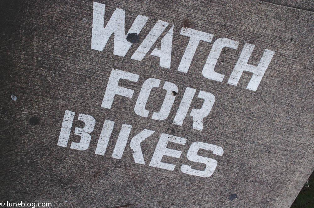 vancouver stanley park sea wall bike ride lune blog (2 of 26).jpg