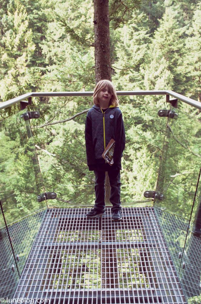 capilano suspension bridge vancouver lune blog (36 of 39).jpg