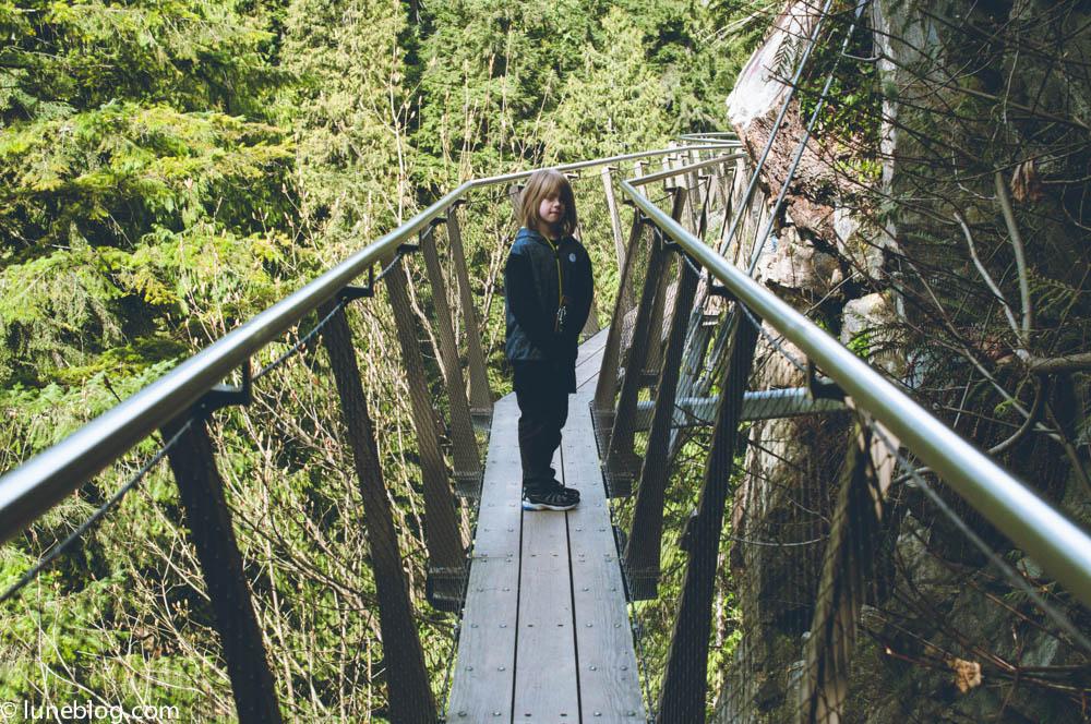 capilano suspension bridge vancouver lune blog (33 of 39).jpg