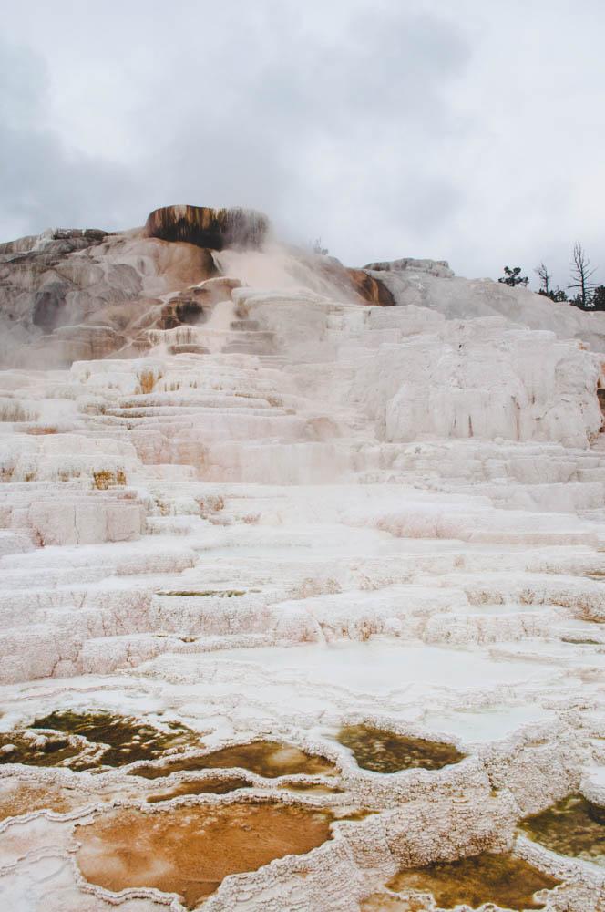 montana lune idyll guide blog yellowstone (97 of 121).jpg