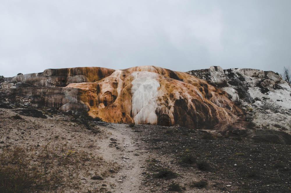 montana lune idyll guide blog yellowstone (100 of 121).jpg