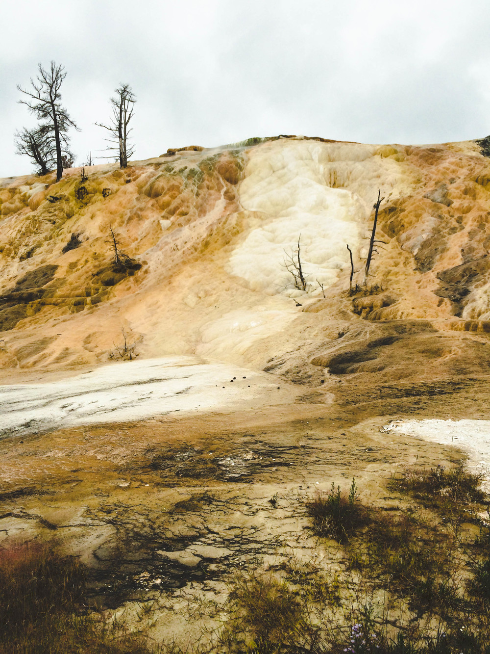 mammoth hotsprings lune idyll guide blog yellowstone (2 of 5).jpg
