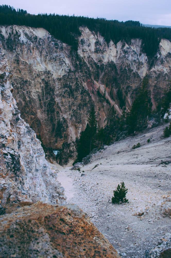 montana lune idyll guide blog yellowstone (30 of 121).jpg